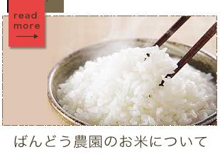 ばんどう農園のお米について